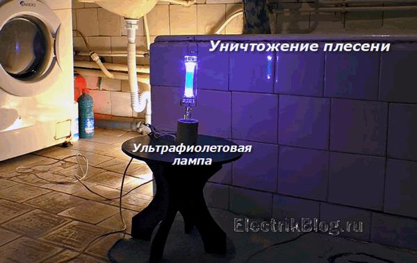 Уничтожение плесени