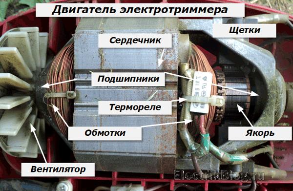 Двигатель электротриммера